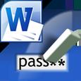 Word Password Recovery Lastic icon